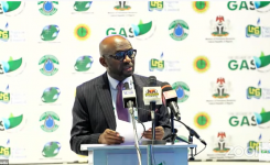 NLNG boss calls for urgent development and utilization of Nigeria's gas resources to energy needs
